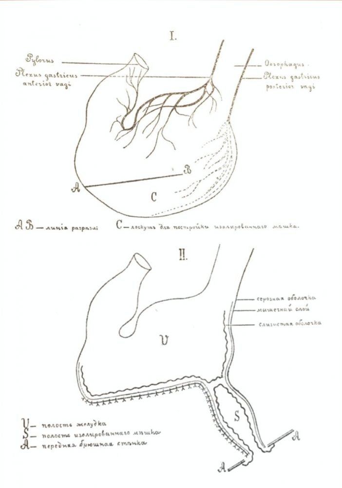 PAVLOV'S MAIN WORK] Lectures on the Work of the Principal Digestive Glands. I. P. Pavlov